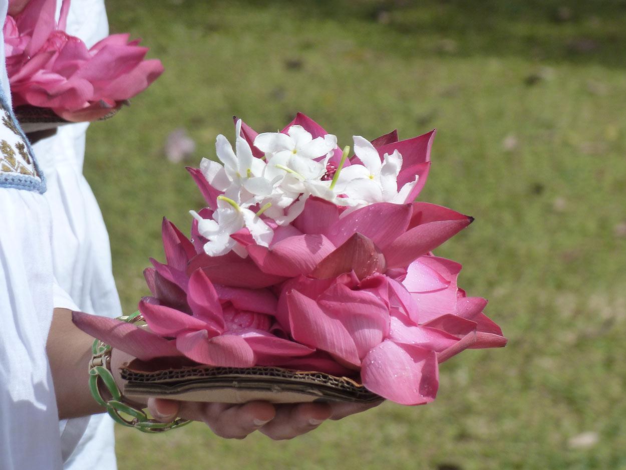 viajes a SriLanka