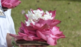 Isla Mítica - Viaje A Sri Lanka