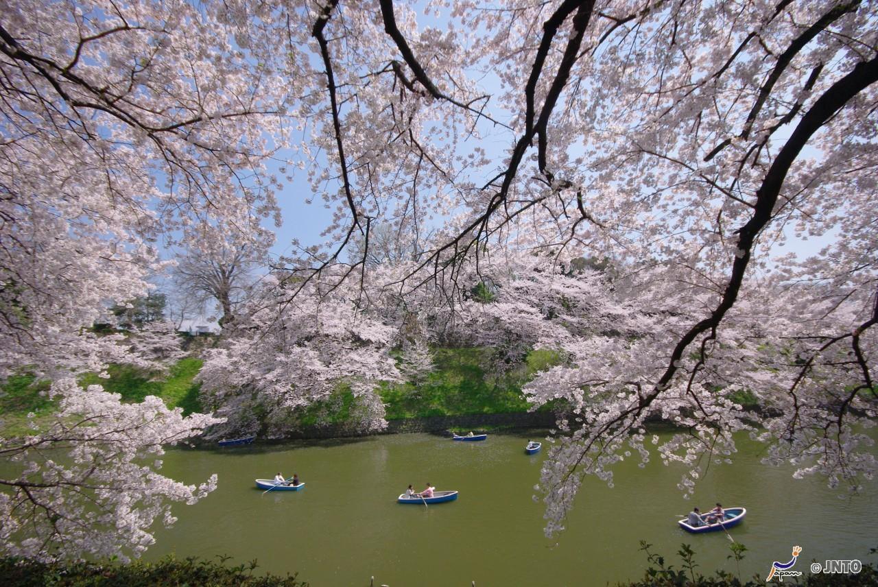 tokyo-en-barca