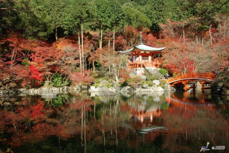 Circuitos Por Japón - Que Ver En Kyoto