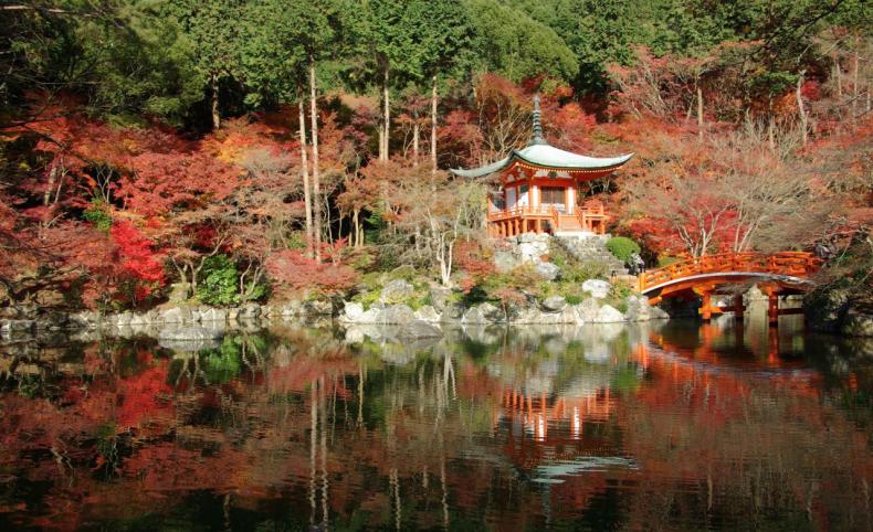 Palacio Kyoto - Que Ver En Japón