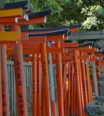 Circuitos A Japón - Qué Ver Y Qué Visitar