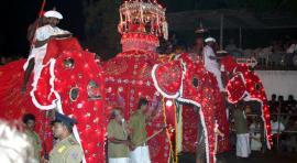 Sri Lanka, procesión de Kandy