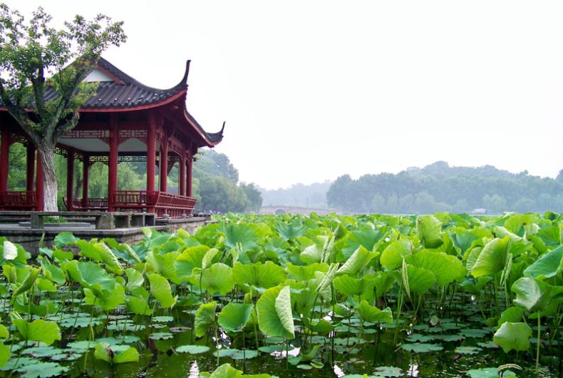 Viajes Por China - Ruta Por Hangzhou