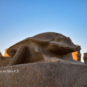 Viaje A Karnak