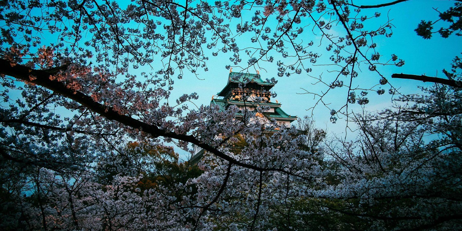 Osaka viaje Japón