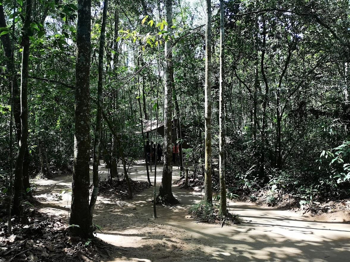 la jungla TUNELES VIETNAM